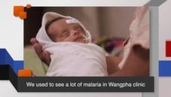 News Words: Malaria