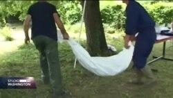BiH: Potreba pomoć države u traženju preostalih 7000 nestalih