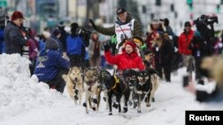 Four-time champion Jeff King and his team leave the ceremonial start of the Iditarod Trail Sled Dog Race in Anchorage, Alaska, March 5, 2016. King's team was one of two struck Saturday by a snowmobile rider.