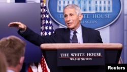 National Institute of Allergy and Infectious Diseases Director Anthony Fauci addresses the daily press briefing at the White House in Washington, Jan.21, 2021.