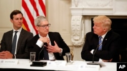 Tim Cook, Chief Executive Officer of Apple, speaks as President Donald Trump, right, and Jared Kushner, White House Senior Adviser, left, listen during an American Technology Council roundtable in the State Dinning Room of the White House, June 19, 2017.