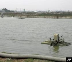 學甲區到處可以見到養魚塘