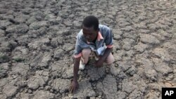 FILE - In this file photo taken Sunday Jan. 29, 2016, Last Zimaniwa feels the broken ground at a spot which is usually a reliable water source that has dried up due to lack of rains in the village of Chivi , Zimbabwe.