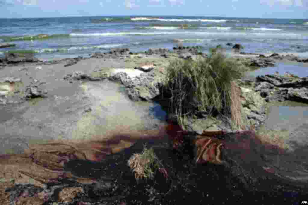 Oil is seen on the beach at Elmers Island, Louisiana, 21 May 2010. (AFP Image)