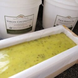 Once the soap has reached trace, it is poured into molds to harden and dry out