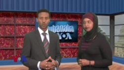 Qubanaha VOA, October 4, 2013