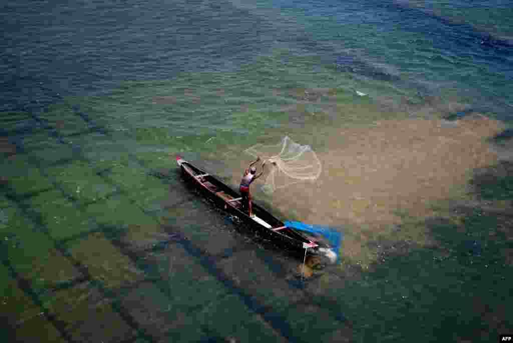 Seorang nelayan India melemparkan jalanya ke sungai Mohanadi di Munduli, dekat kota Bhubaneswar, India timur.