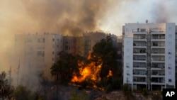 Kebakaran hutan di kawasan Haifa, Israel, 24 November 2016 (AP Photo/Ariel Schalit)