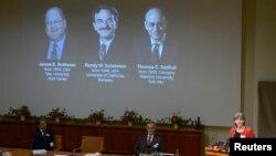7일 스웨덴의 노벨위원회 위원장이 올해 노벨 생리의학상 수상자를 발표하고 있다.