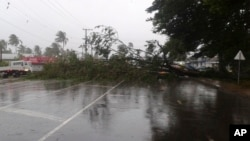 A tree blocks a road after it was blown down by the encroaching cyclone Winston in Nakasi, Fiji, Feb. 20, 2016.