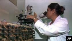 Perusahaan farmasi, Sanofi Pasteur, melakukan pendekatan molekuler untuk membuat vaksin anti-demam berdarah (foto: Dok).