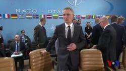 NATO kengayishda davom etadi