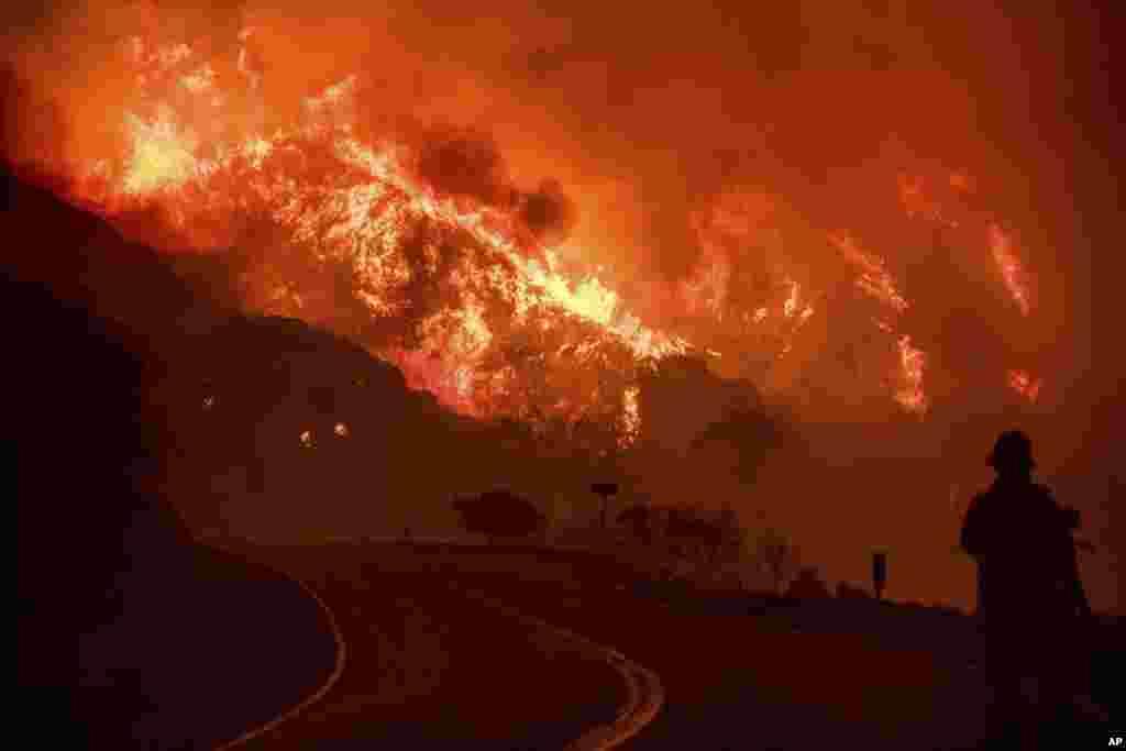 Лісова пожежа у національному лісі Лос Падрес в Каліфорнії, 8 грудня 2017 року.