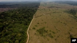 FILE - A photo of a deforested area near Novo Progresso in Brazil's northern state of Para, Sept. 15, 2009.