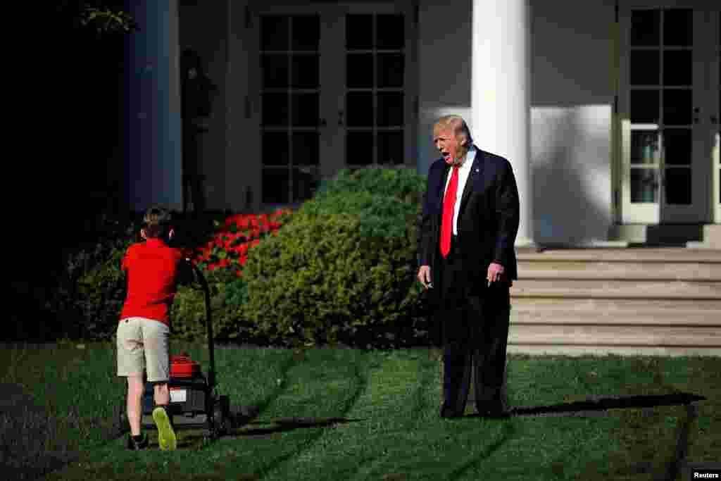 美国总统川普欢迎11岁的弗兰克·加西奥在白宫玫瑰园剪草(2017年9月15日)。此前加西奥写了一封信给总统,希望能让自己修剪白宫的草坪。 白宫批准了,请他在白宫和国家公园管理局的工作人员一起工作一天。