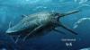 Large Creature Swam the Seas 170 Million Years Ago