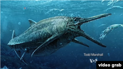 Sea monster swam the seas 170 million years ago