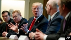 President Donald Trump speaks during a meeting with steel and aluminum executives in the Cabinet Room of the White House, March 1, 2018, in Washington.