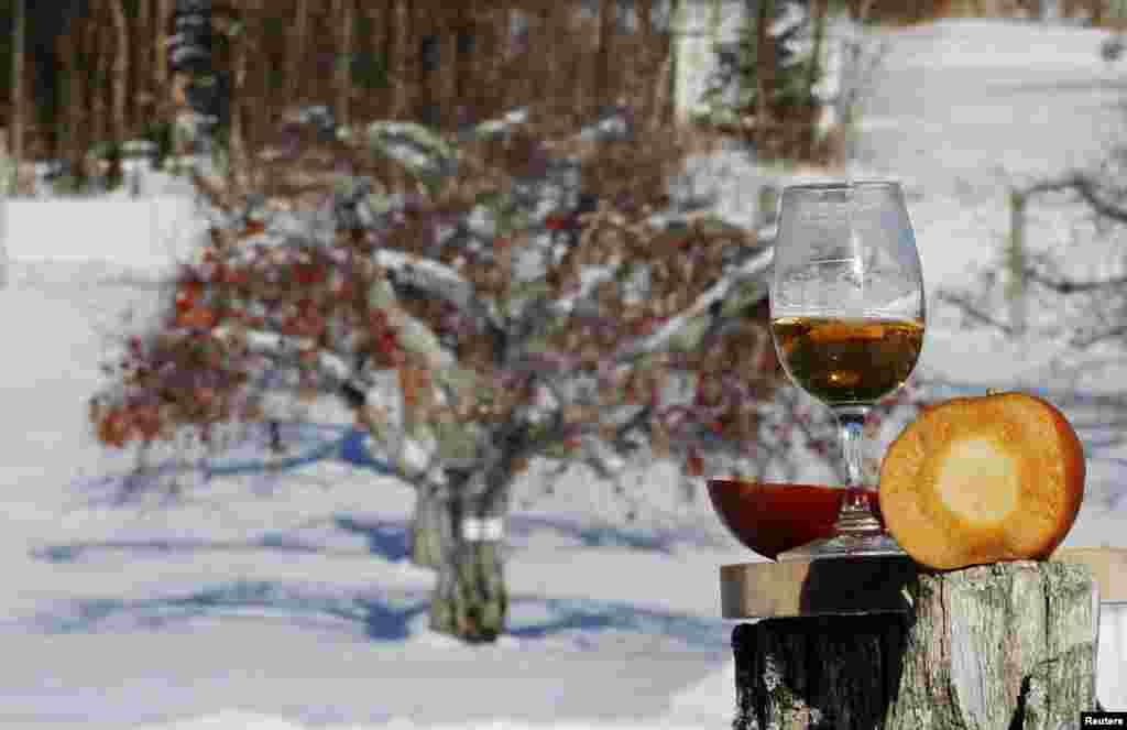 موسم سرما میں پھلوں کو درختوں سے علیحدہ کر کے ان سے مشروب ' آئس سائیڈر' تیار کیا جاتا ہے۔