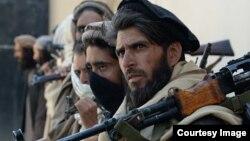 طالبان تماس ها میان رهبری این گروه حزب اسلامی حکمتیار را برای پیوستن به روند صلح نیز رد کرده اند