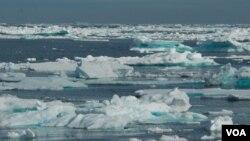 Muchos de los glaciares más anchos que hay en la región han disminuido de tamaño.