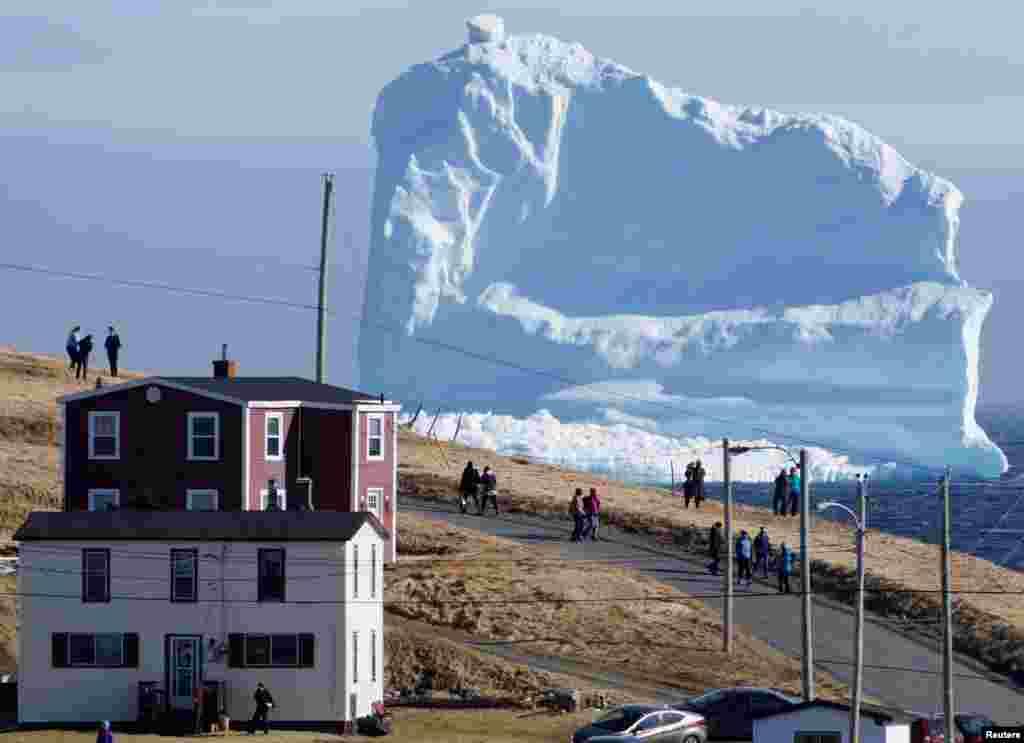 Warga setempat mengamati gunung es (iceberg) melewati laut selatan kota Ferryland, Newfoundland, Kanada.
