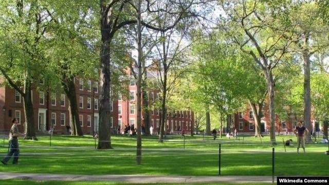 Khuôn viên Đại học Havard