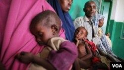 Bencana kelaparan di Somalia menewaskan sekitar 260 ribu orang, 133 ribu di antaranya balita (foto: dok).