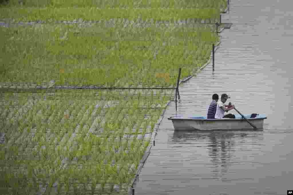 دو مرد جوان اهل کره شمالی در کنار مزرعه برنج در نزدیکی پایتخت این کشور.