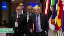 VOA连线(江静玲):约翰逊可望在月底带领英国脱欧?