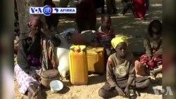 VOA60 AFIRKA: Dakarun Afirka Sun Kubutar Da Mutane 5000 Daga Hanun 'Yan Boko Haram