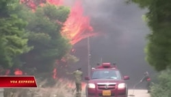 Hy Lạp nghi ngờ có người phóng hỏa gây ra vụ cháy rừng dữ dội