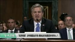 """时事看台(许宁):""""经济间谍""""涉华案层出不穷,美执法行动是否针对华人?"""