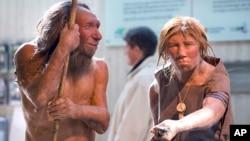 انسان های نئاندرتال، بازسازی شده بر اساس استخوان های فسیلی کشف شده.