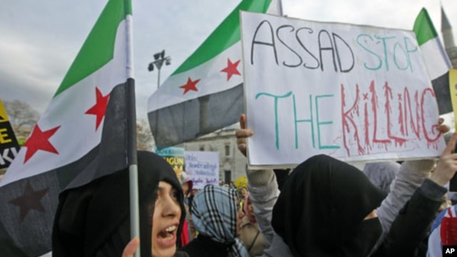 A demonstrator protests against Syria's President Bashar al-Assad in Damascus, Syria, December 19, 2011.