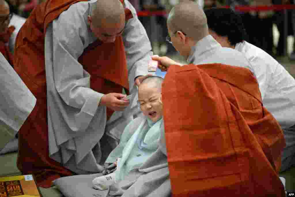 Một đứa trẻ được các nhà sư cạo đầu trong một buổi lễ tại chùa Jogye ở Seoul, Hàn Quốc.