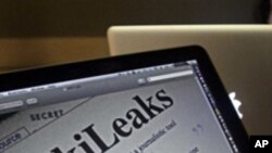 WikiLeaks ၀က္ဘ္ဆုိက္ဒ္ေရာ တည္ေထာင္သူပါ ၿခိမ္းေျခာက္ခံရ