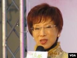 台灣立法院副院長 洪秀柱 (張永泰攝)
