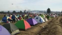 Криумчари на мигранти македонската граница