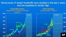 糧食價格持續高企
