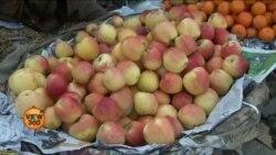 پاکستان بھارت کشیدگی سے کشمیر میں پھلوں کے تاجر متاثر