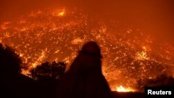 Firefighters battle the Powerhouse wildfire at the Angeles National Forest, with the fire now having destroyed several homes near the Lake Hughes area in California, early morning, June 2, 2013.