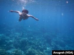 Seorang penyelam saat melihat kondisi bawah laut di perairan Pulau Weh. (Foto: VOA/Anugrah Andriansyah)