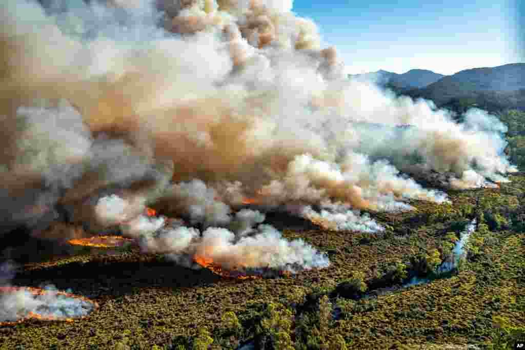 آسٹریلیا میں گرمی کے باعث لگنے والی آگ نے تسمانیہ کے جنگلات کے بڑے حصے کو اپنی لپیٹ میں لے لیا۔
