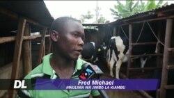 Wakulima Kenya wameanza kutumia nishati ya biogas