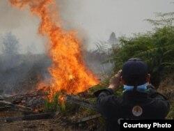 Kebakaran hutan di Indonesia (foto: ilustrasi/Kemen LHK).