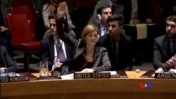 2014-12-31 美國之音視頻新聞: 美國否決有關巴勒斯坦國的安理會決議案