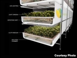 A diagram of an AeroFarms growing shelf. (Courtesy AeroFarms)