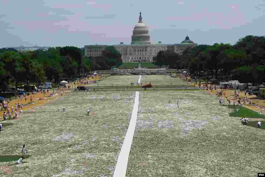 "View of the ""One Million Bones"" installation on the National Mall, Washington, D.C., June 8, 2013. (Jill Craig/VOA)"
