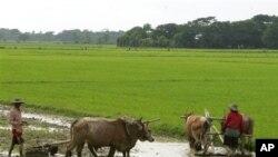 นักรณรงค์เพื่อสิทธิด้านที่ดินในเอเซียประท้วงเรียกร้องให้ธนาคารโลกปฏิบัติตามหลักการ RAI
